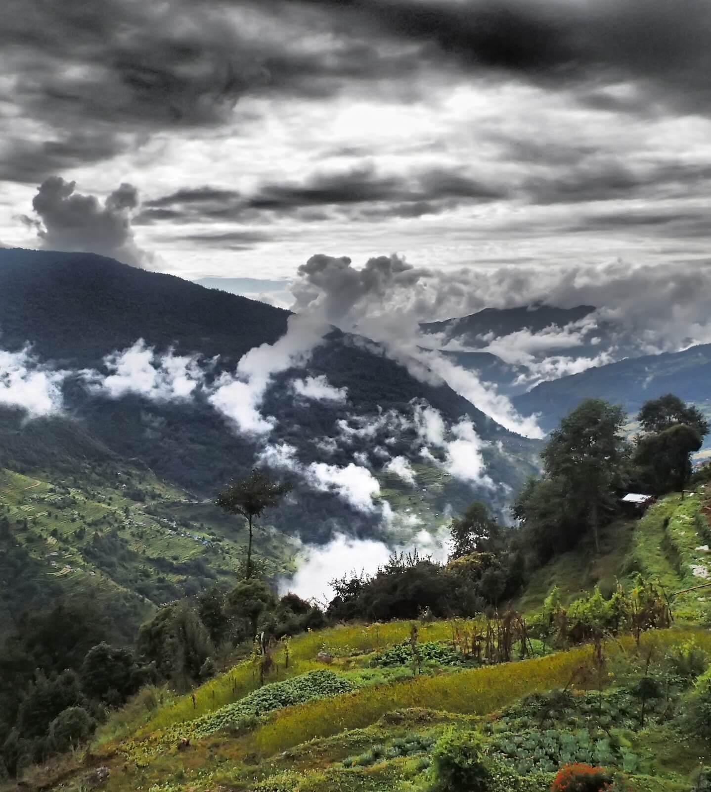 Migawka z trekkingu w kierunku Gorepani , Annapurna trek - fot. Jerzy Kostrzewa