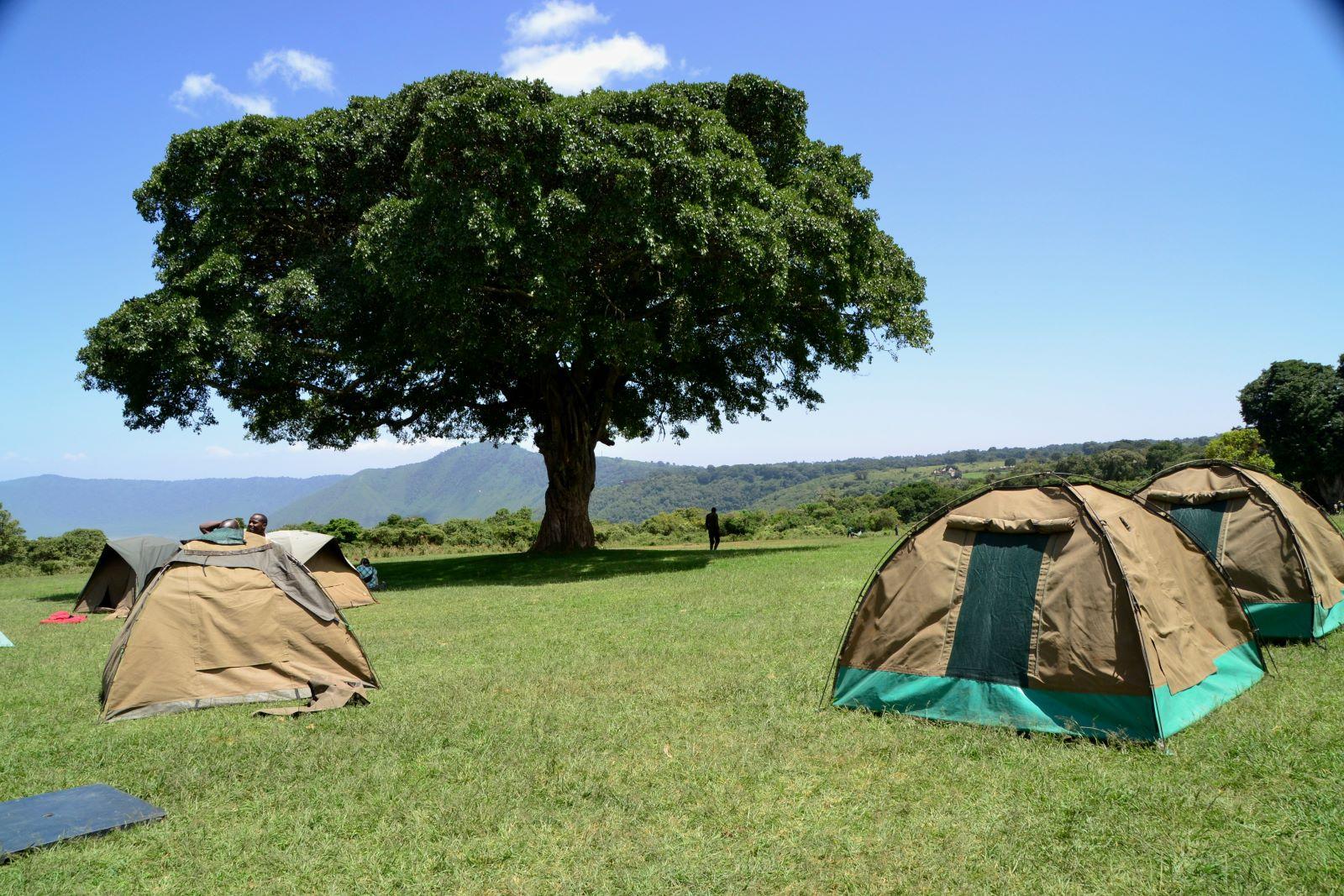 Camp Simba na safari , fot. Jerzy Kostrzewa