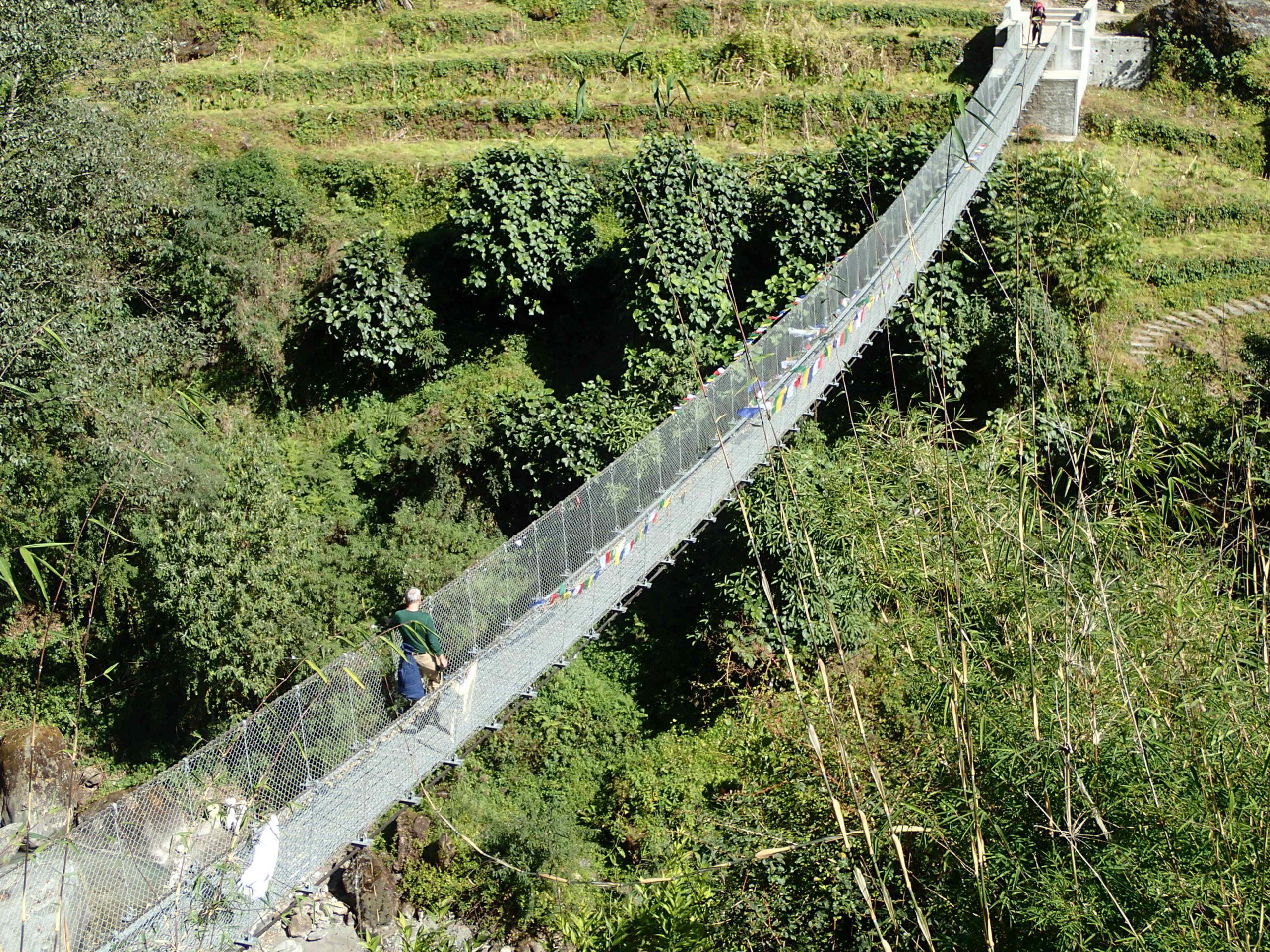 Himalajski mostek fot. Jerzy Kostrzewa