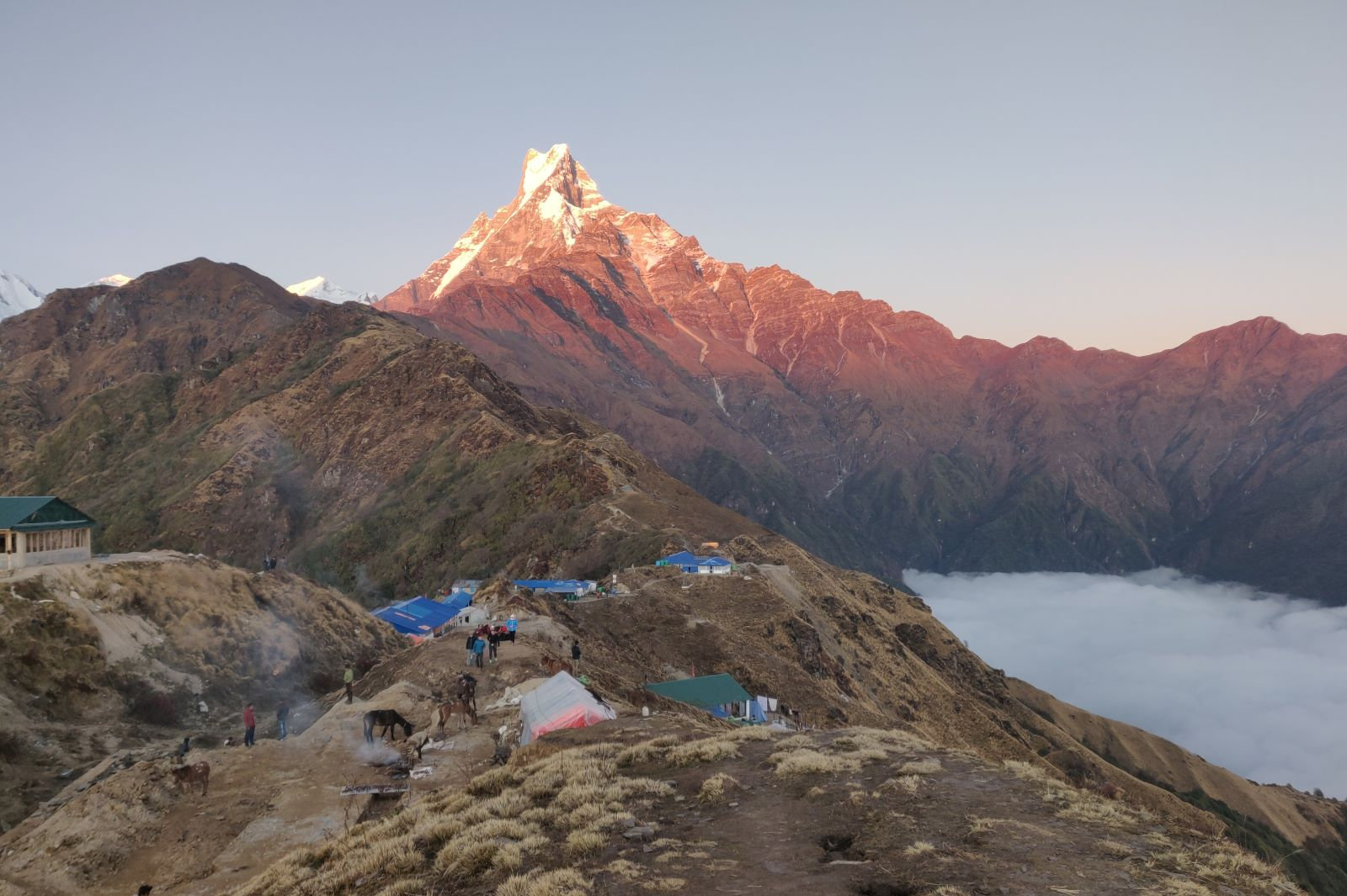 Mardi Himal trek - Machapuchare - High Camp - fot. Tadeusz Szymanowski